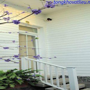 t33 300x300 - Thi Công Gỗ Ốp Tường Smartwood Thái Lan - Uy Tín - Chất Lượng - Giá Rẻ