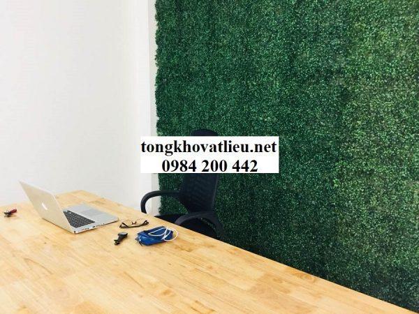 Tường xoang 600x450 - Bảng Giá Thảm Cỏ Nhân Tạo Lót Sàn| Cỏ Sân Vườn Giá Sỉ Lẻ Từ Nhà Máy