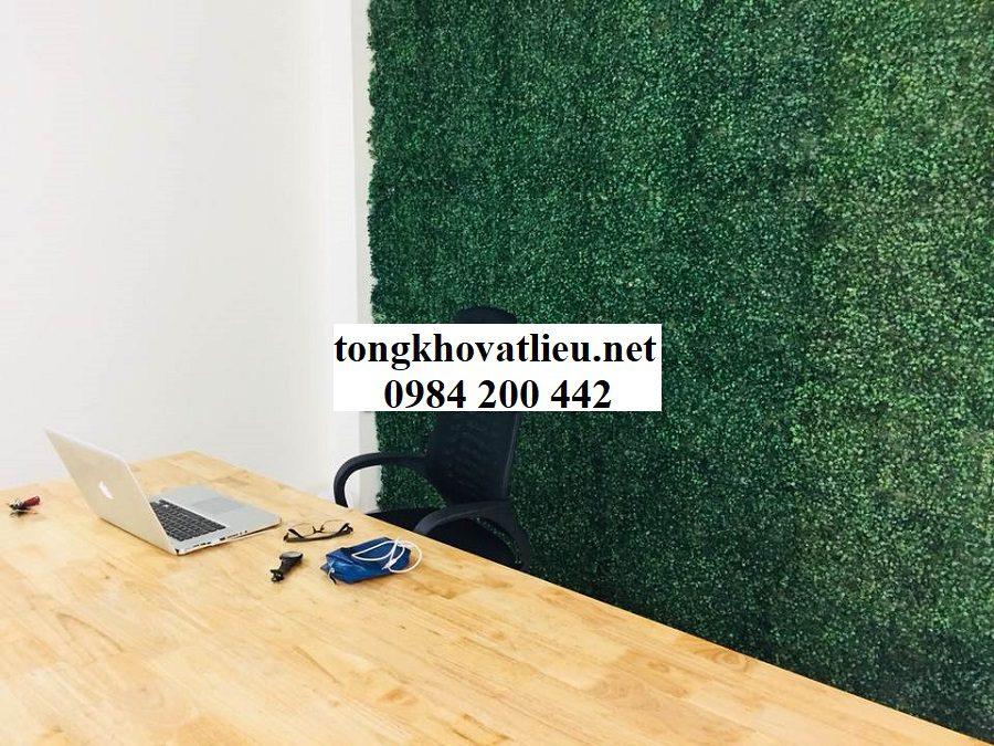 Tường xoang - Bảng Giá Thảm Cỏ Nhân Tạo Lót Sàn| Cỏ Sân Vườn Giá Sỉ Lẻ Từ Nhà Máy