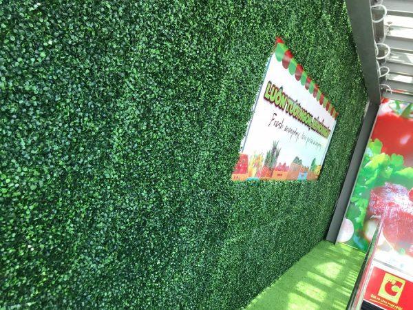 tuong xa lach xoong 600x450 - Bảng Giá Thảm Cỏ Nhân Tạo Lót Sàn| Cỏ Sân Vườn Giá Sỉ Lẻ Từ Nhà Máy